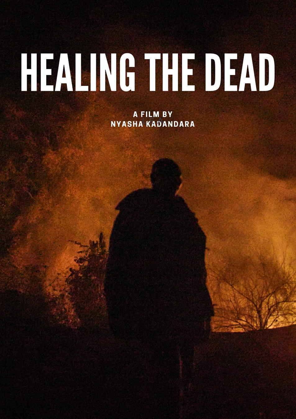 Healing The Dead